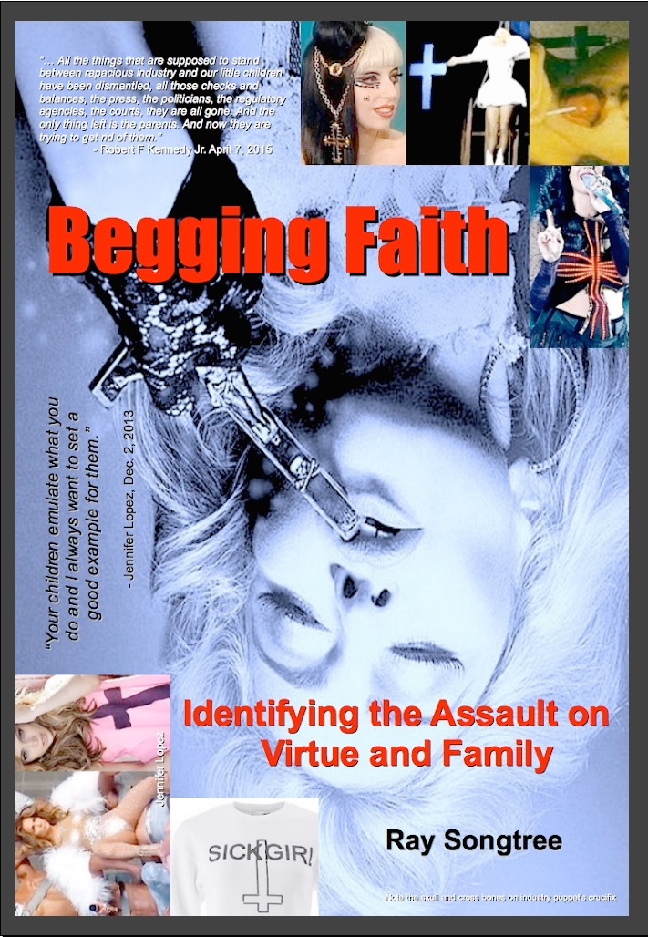 begging faith front cover framed May 25 copy
